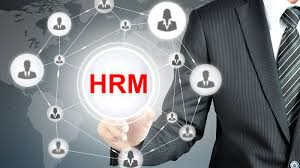 Human Resource Management Market SWOT Analysis by Key Players Workday, ADP, Microsoft, Sage