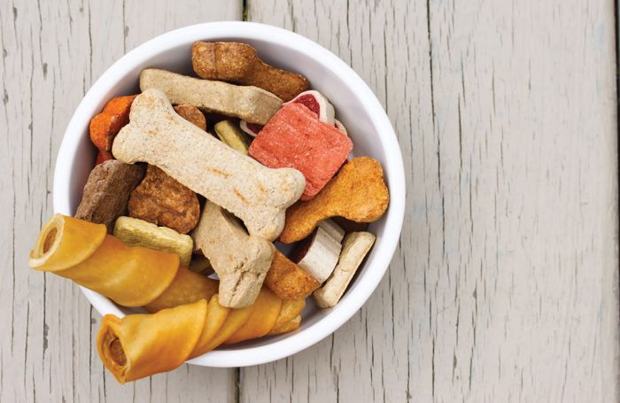 Dog Snacks Market Growing Popularity and Emerging Trends | Blue Buffalo, Petcare, Nestle Purina, Colgate, Big Heart