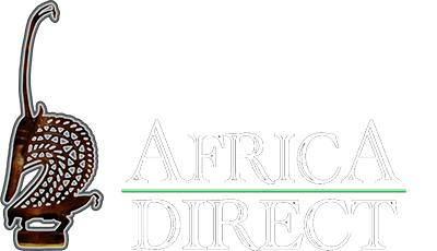 Africa Direct - Introducing the world to African Art, helping Africa while doing it.