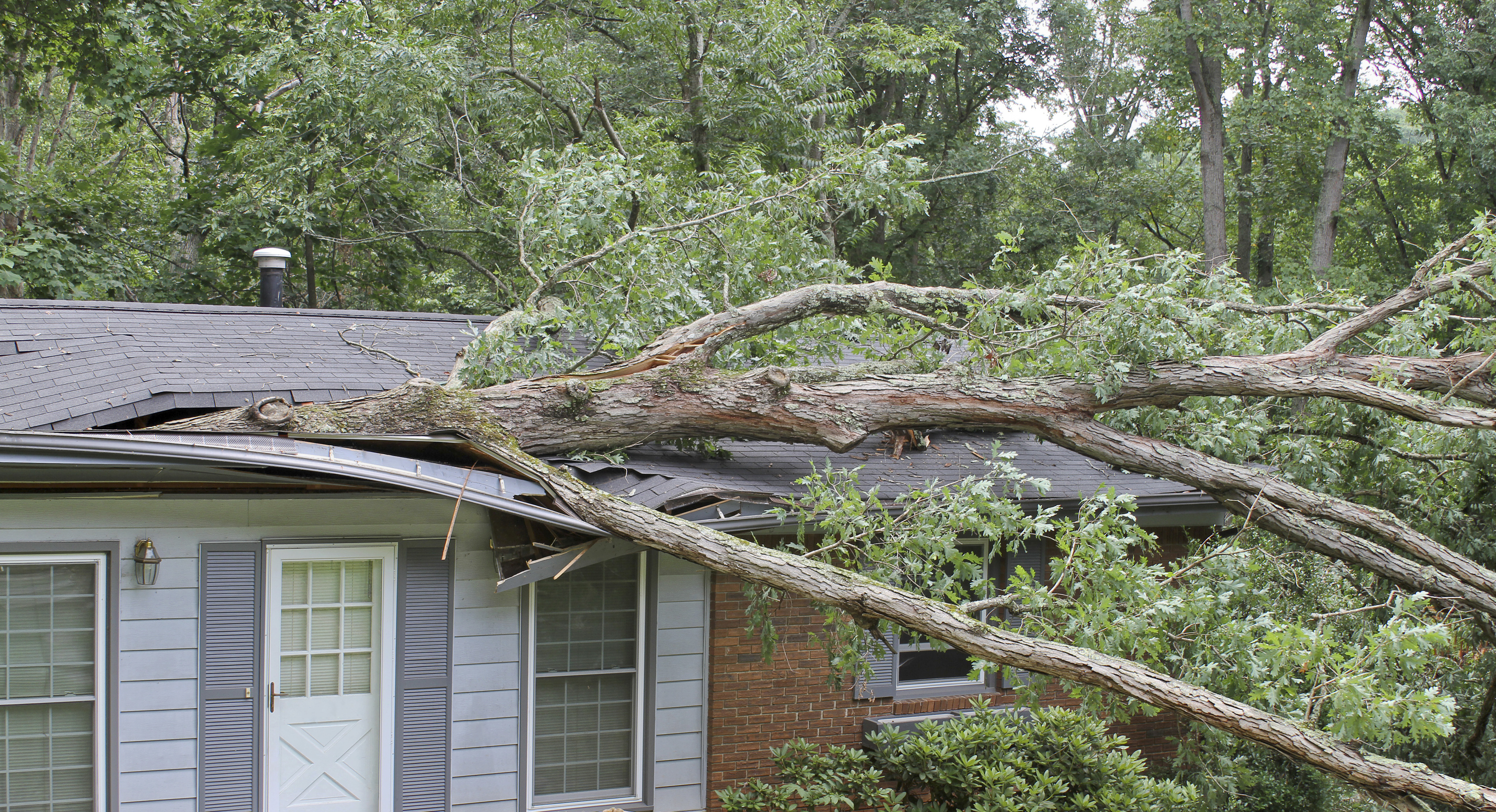 Recent Weather Events in Charlotte and Public Adjuster Support