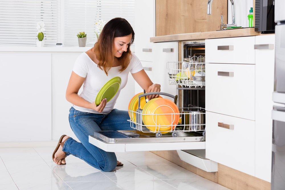 Approach Only Experienced Dishwasher Repair Mechanics