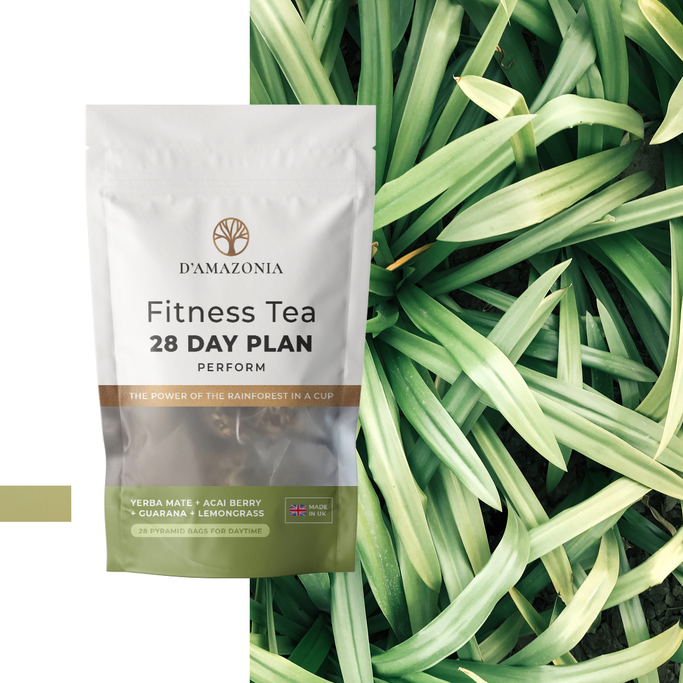 D'Amazonia Delivers All-Inclusive Christmas Hamper to Athletes With Their Fitness Tea