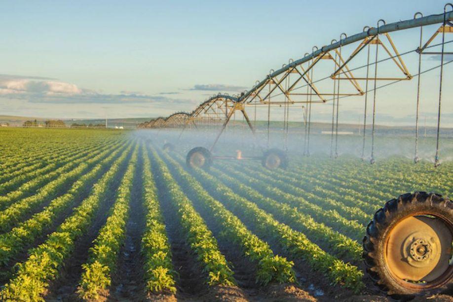 Precision Irrigation Market Is Booming Worldwide : Grodan, Hortau, Aquaspy