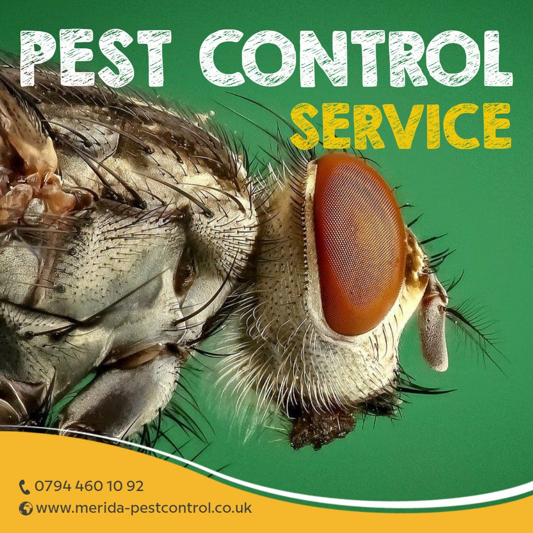 A Brilliant Approach of Organic Technique of Pest Control By Pest Control Harefield, Pest control Harlington and Pest Control Harmondsworth