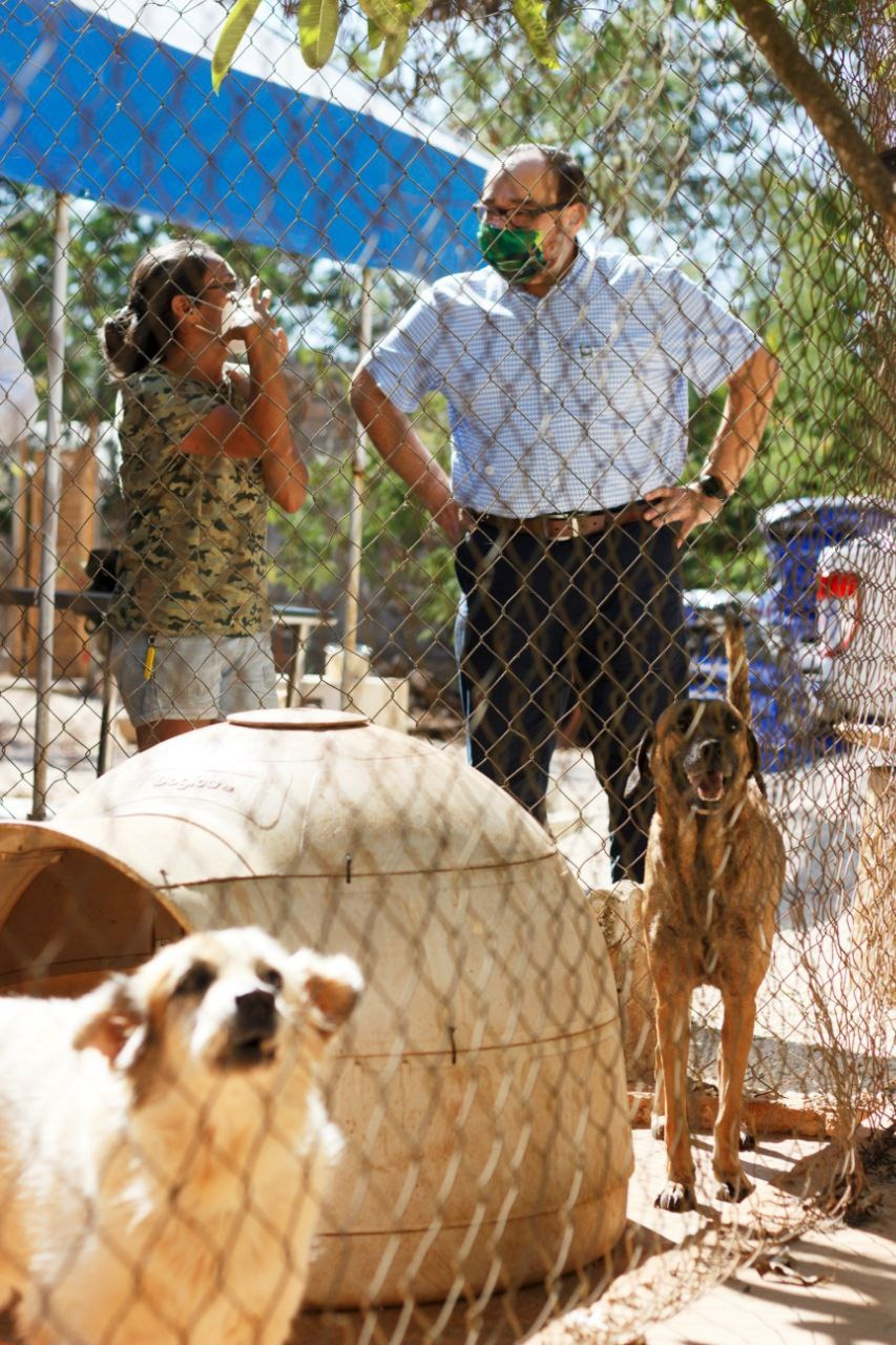 Dog food against people obesity: Yucatan resident launches challenge for help population health and help dog shelters