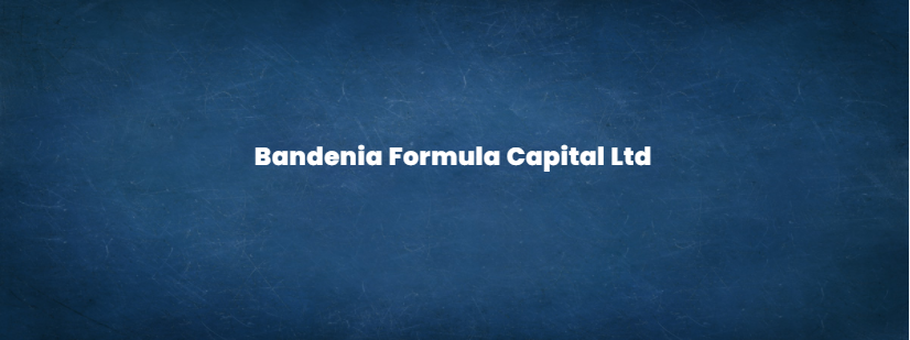 Bandenia Formula Capital LTD - Functions of Financial Intermediaries
