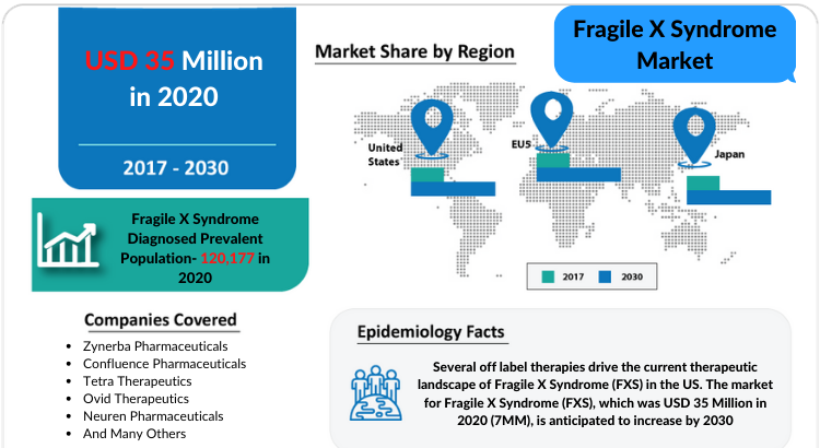 Changing Market Dynamics of Fragile X Syndrome Market in the Seven Major Markets