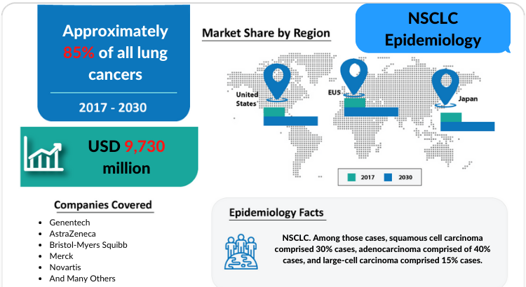 Comprehensive insight has been provided into the epidemiology of the NSCLC and its treatment in the 7MM