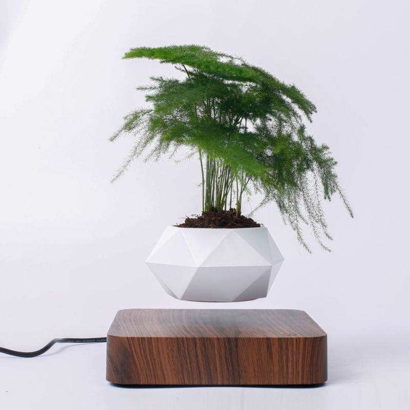 Trendylush is a new, trending website selling unique products such as floating pots, cute train humidifiers and more - they are the perfect gifts