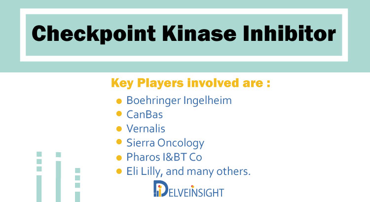 Checkpoint Kinase Inhibitor Pipeline Analysis | Report by DelveInsight