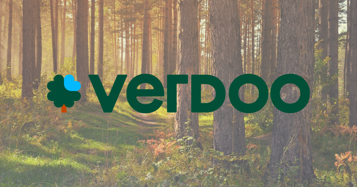 Verdoo: A Social Start-Up That Plants Trees For Any Online Purchase Over 10000 Online Stores Have Already Joined The Program