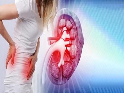 A Comprehensive Study Exploring Kidney or Renal Cancer Drugs Market | Key Players Clinigen, Roche, Novartis, Bayer