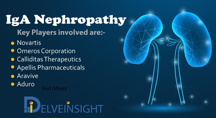 IgA Nephropathy Market, Epidemiology, and Market Forecast Analysis Report