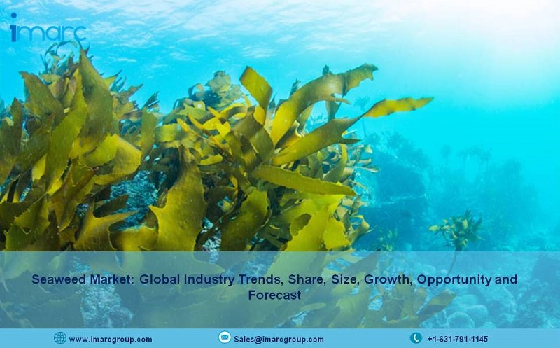 Seaweed Market Price 2021-2026: Size, Growth, Value, Demand, Driving Factors and Research Report - IMARC Group