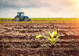 Agricultural Biologicals Market Size Expected to Expand USD 13.5 Billion By 2026, at 9.4% CAGR Growth: Facts & Factors