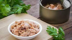 Plant-based Tuna Market To Show Strong Growth & Demand | Quorn,Amy's Kitchen, Inc., Tofurky, Gold&Green Foods Ltd.
