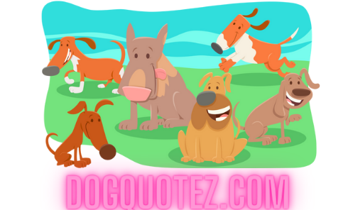 Dogquotez Gains Popularity In The U.S Among Dog Lovers and Trainers