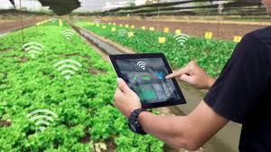 Smart Agriculture/Agritech Market Size Predicted to Reach USD 19,625 Million By 2027: Facts & Factors