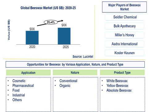 Beeswax Market is expected to grow at a CAGR of 3%-4% - An exclusive market research report by Lucintel