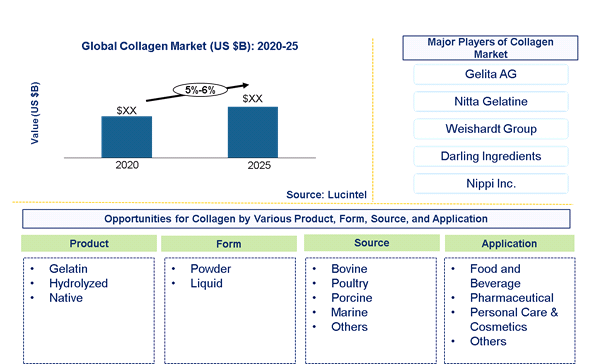 Collagen Market is expected to grow at a CAGR of 5%-6% - An exclusive market research report by Lucintel