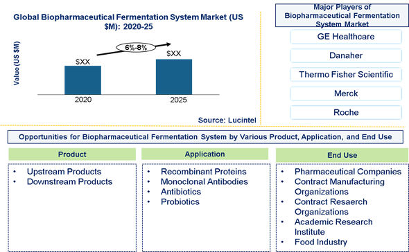 Biopharmaceutical Fermentation System Market is expected to grow at a CAGR of 6%-8% - An exclusive market research report by Lucintel