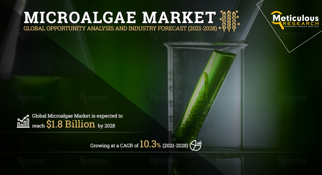 Microalgae Market is Expected to Reach $1.8 Billion by 2028, at a CAGR of 10.3% During the Forecast Period of 2021 to 2028 - Exclusive Report by Meticulous Research®