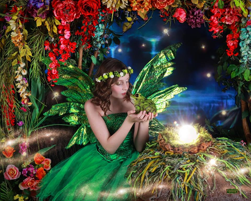 Enchanted Fairies Announces Over $1 Million Donated to Children's Charities