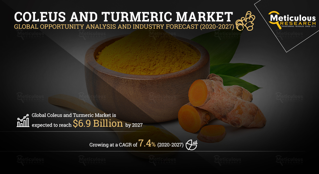 Coleus and Turmeric Market: Meticulous Research® Reveals Why the Market Is Expected to Reach $6.9 Billion by 2027, at a CAGR of 7.4%.