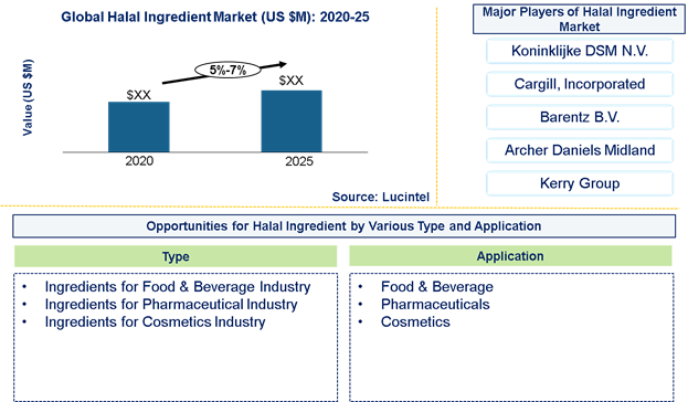 Halal Ingredient Market is expected to grow at a CAGR of 5%-7% from 2020 to 2025 - An exclusive market research report by Lucintel