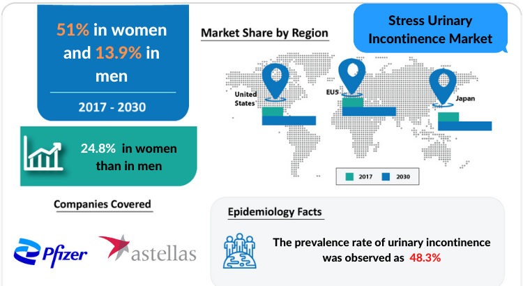 Stress Urinary Incontinence Market Insights and Market Report 2030 by DelveInsight