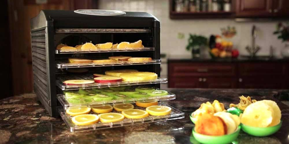 Freeze Drying Market SWOT Analysis, Business Growth Opportunities by 2031