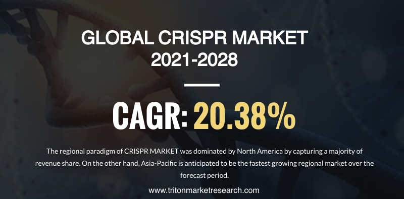 The Global CRISPR Market Evaluated to Surge at $4521.76 Million by 2028