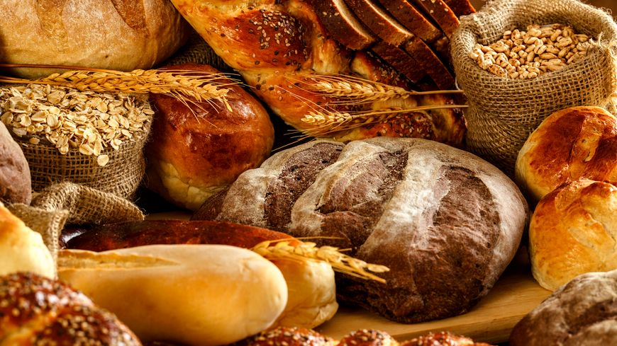 Organic Gluten Substitutes Market is Booming Across the Globe by Share, Growth Size, Key Segments and Forecast to 2031