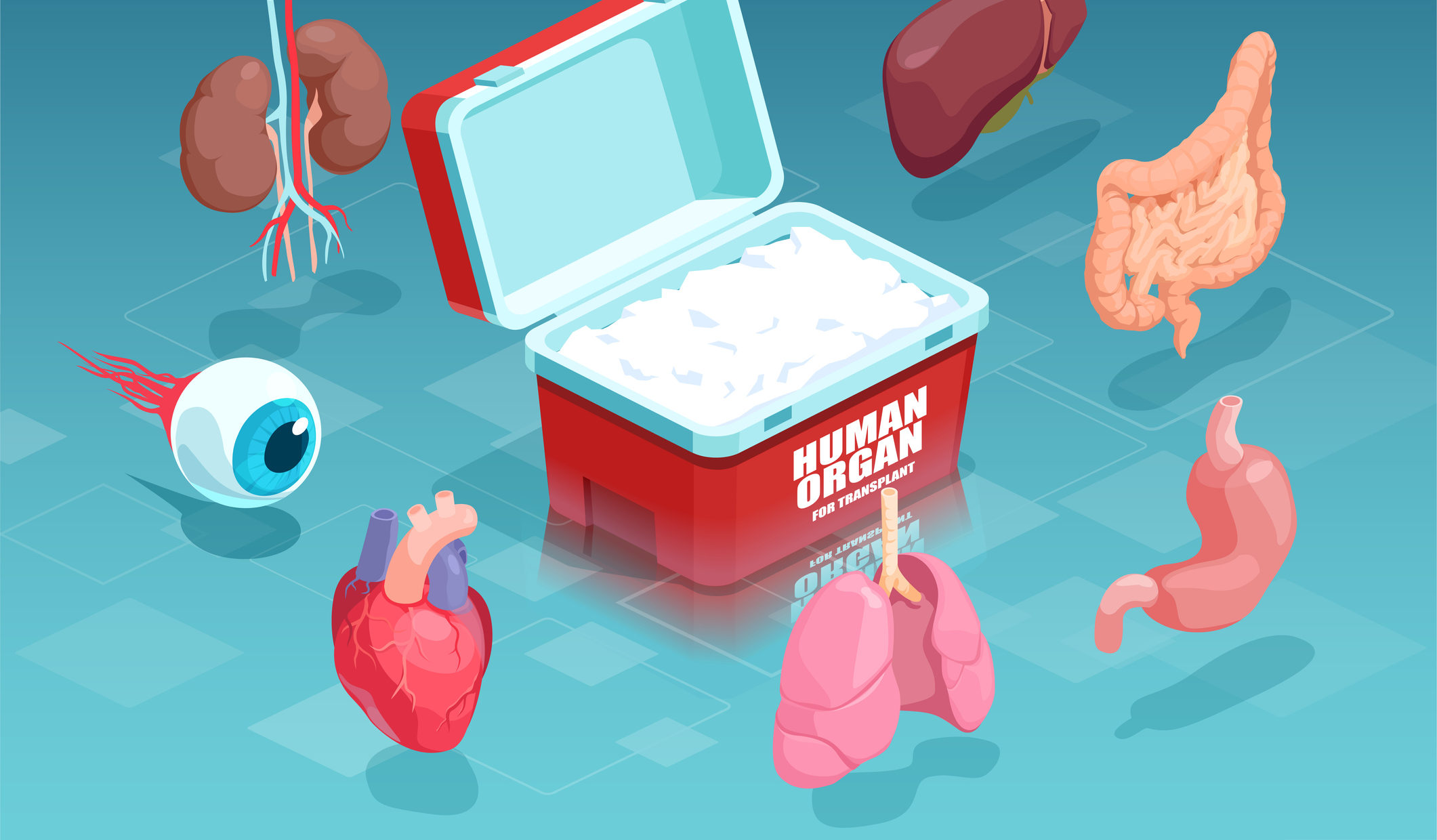 Transplant Diagnostics Market Emerging Trends, Technological Advancements, Future Growth, Application Potential by 2031
