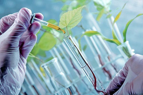 Fermentation Chemicals Market Demand, Growth, Revenue Analysis and Trends, Report Forecast by 2031