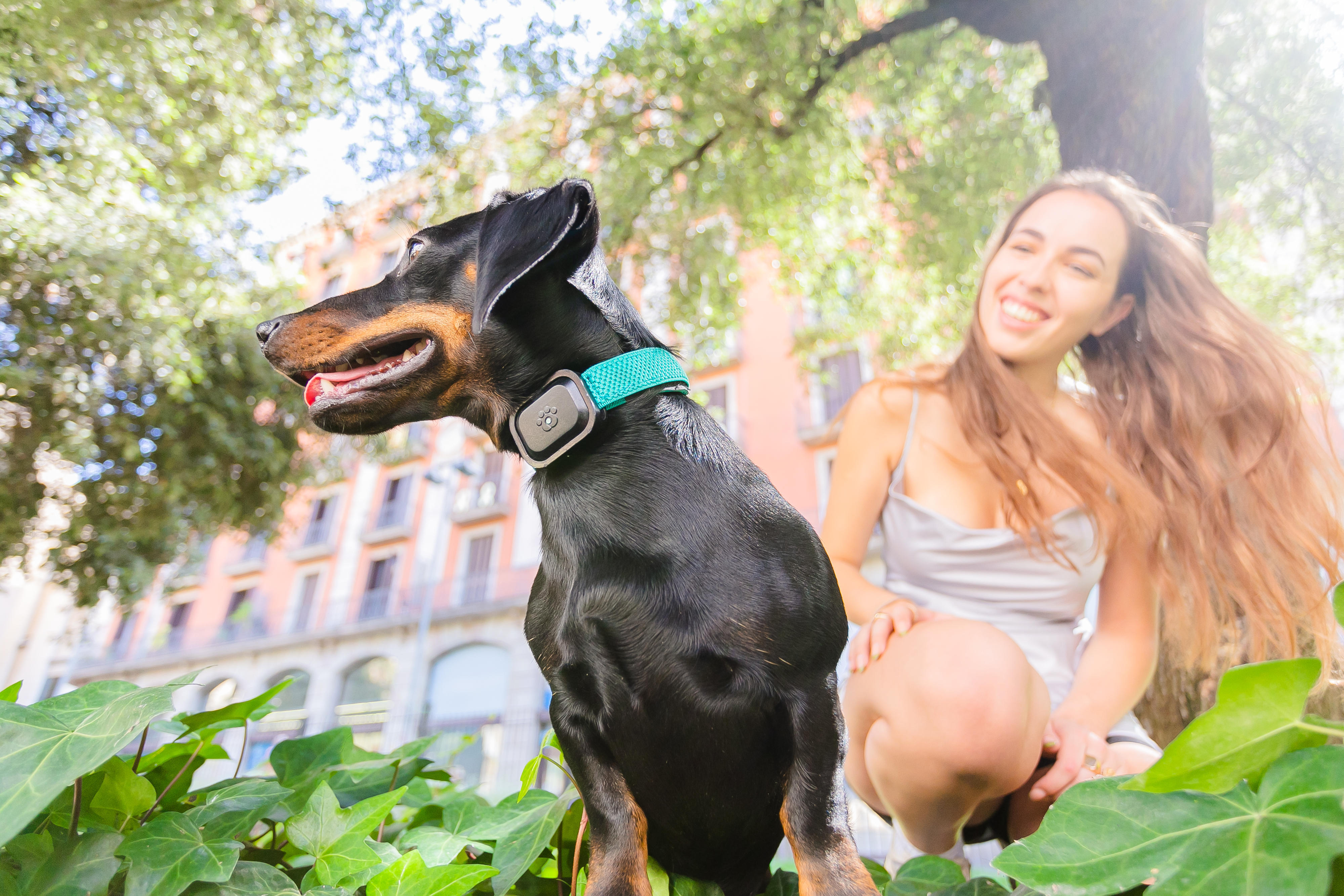 Is this the FitBit for pets? MyPetGo Launches Their Pet Health & Location Monitor On Indiegogo