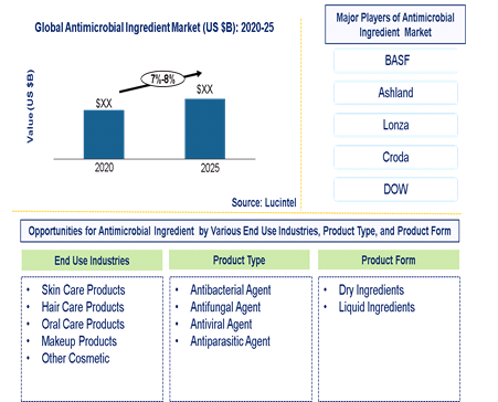 Antimicrobial Ingredient Market is expected to grow at a CAGR of 7%-8% - An exclusive market research report by Lucintel