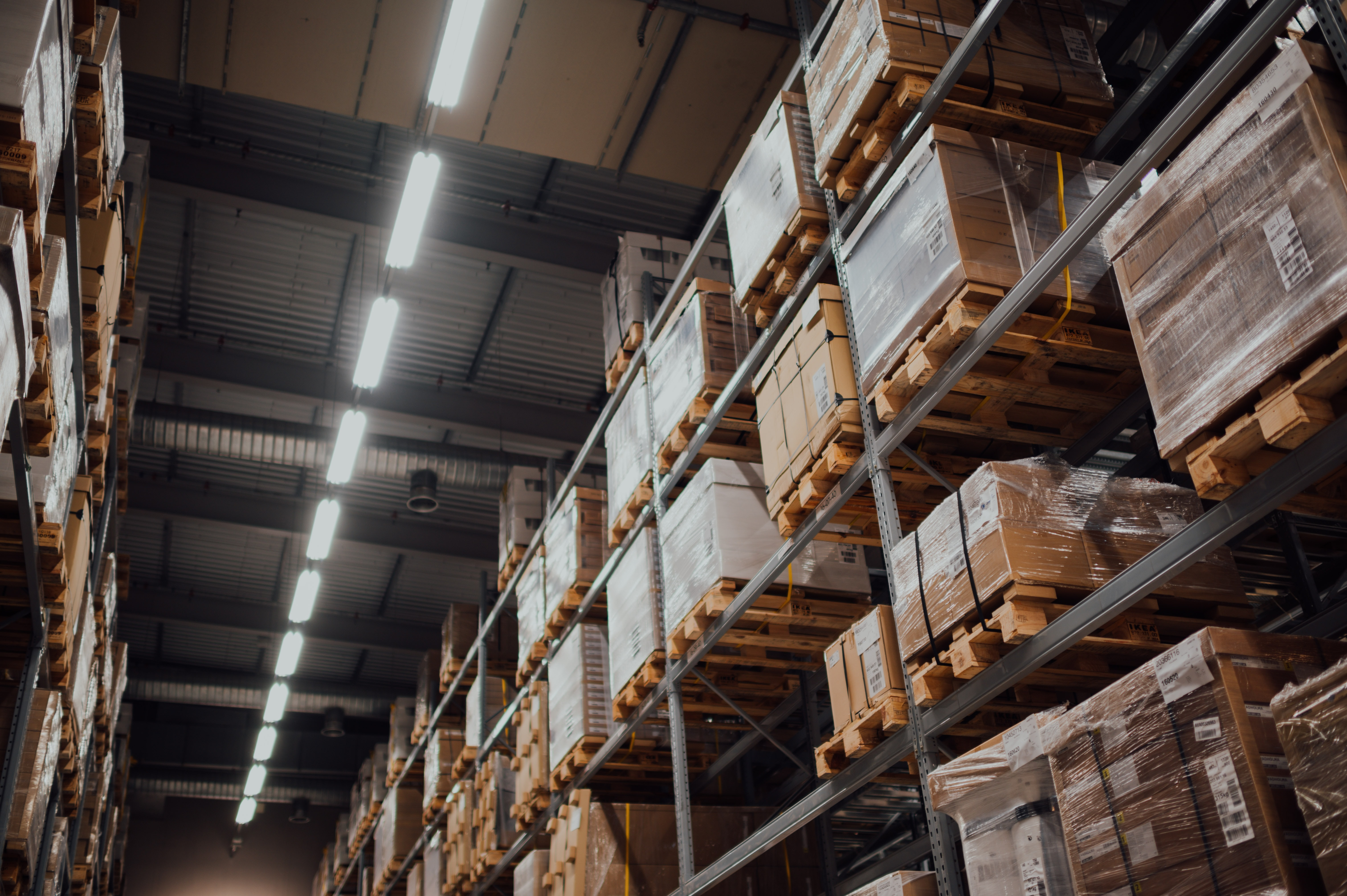 Kayteria Knott's Reveals Top Tips for Reducing Environmental Impact in Logistics