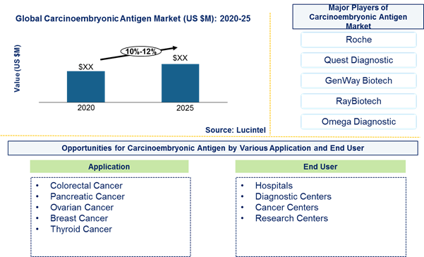 Carcinoembryonic antigen market is expected to grow at a CAGR of 10%-12% by 2026 - An exclusive market research report by Lucintel