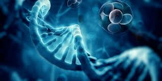 Cell-Based Regenerative Medicine Market 2021 High Growth Forecast due to Rising Demand and Future Trends to 2031