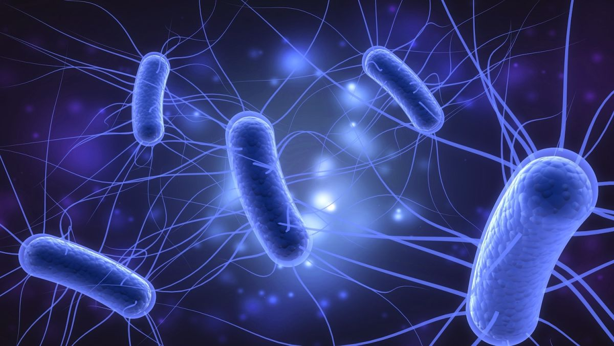 Escherichia Coli (E. Coli) Diagnostic Testing Market Research Based On Huge Growth Opportunity By 2031