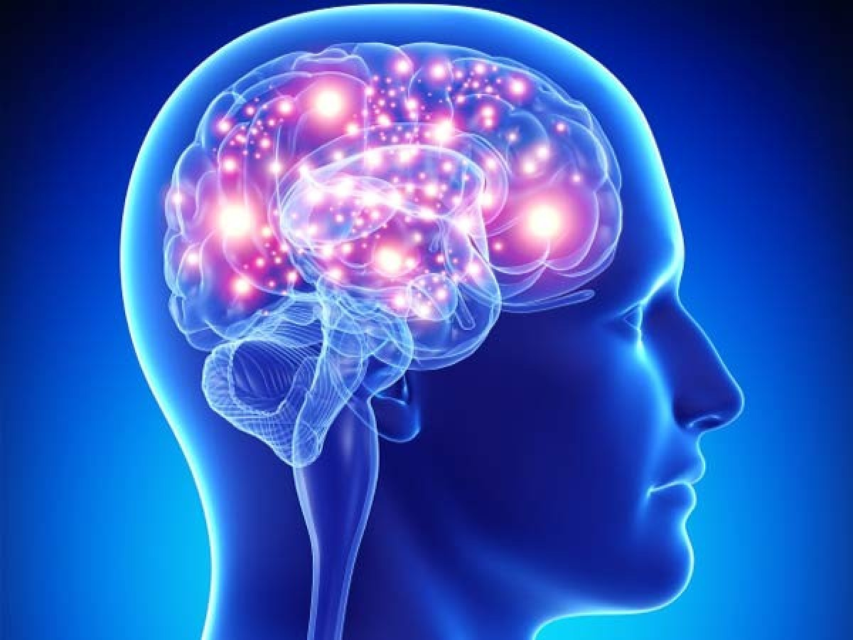 Neurological Biomarkers Market Size, Future Demands, Companies, Regional Sales and Forecast 2031