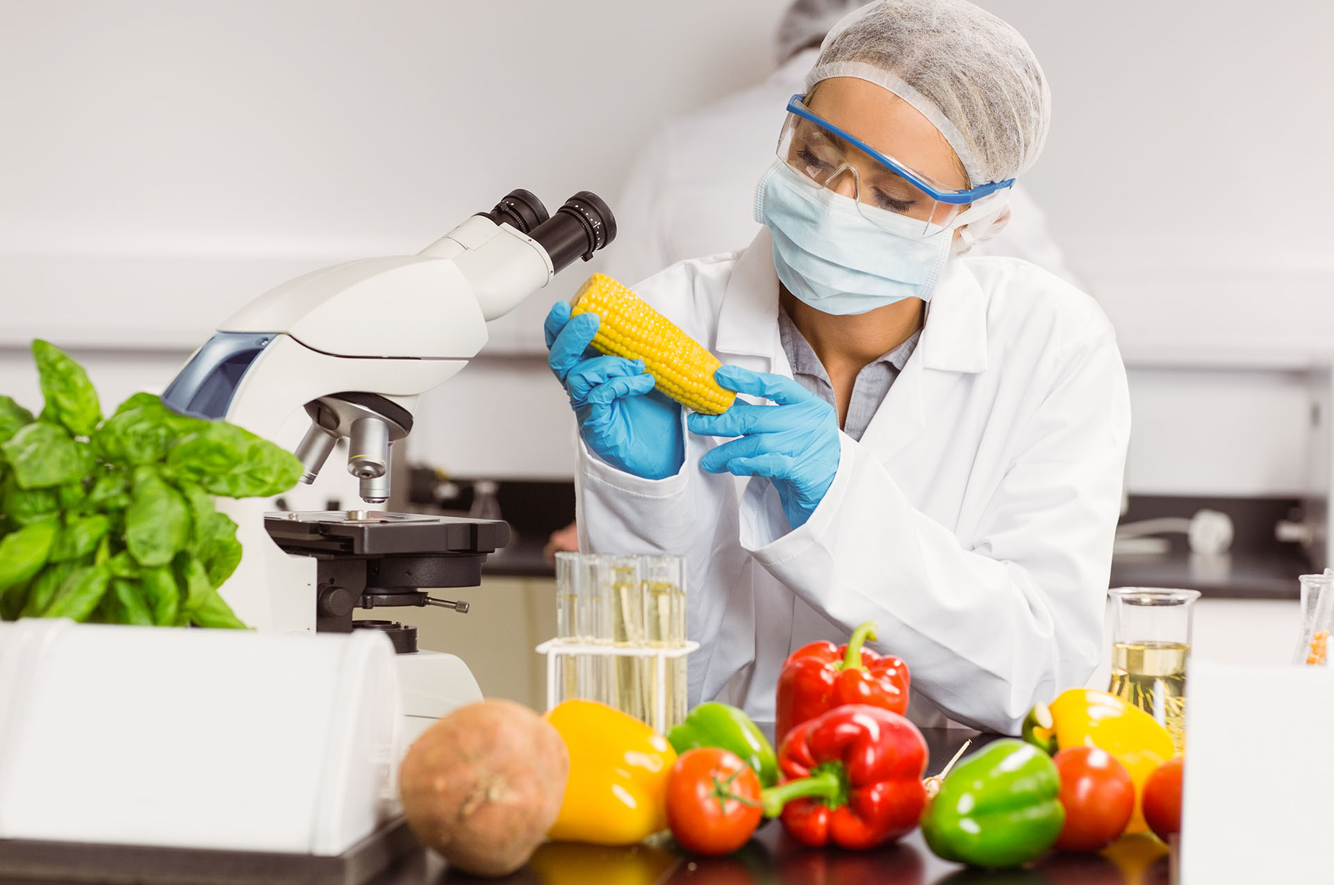 Food Safety Testing Market To Witness A Substantial Growth Owing To Rising Adoption Of Food Safety Till 2031