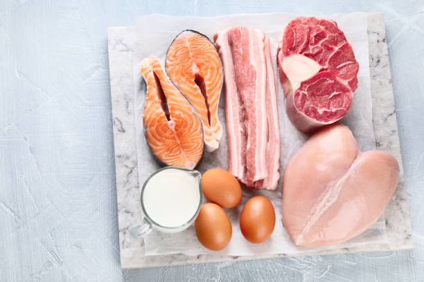 Animal Protein Ingredients Market Stand Out as the Biggest Contributor, Emerging Growth Rate, Application and Forecasts 2031