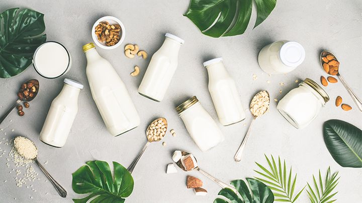 Plant-based Milk Market Massive Demand Leading To Exponential 11.3% CAGR By 2031