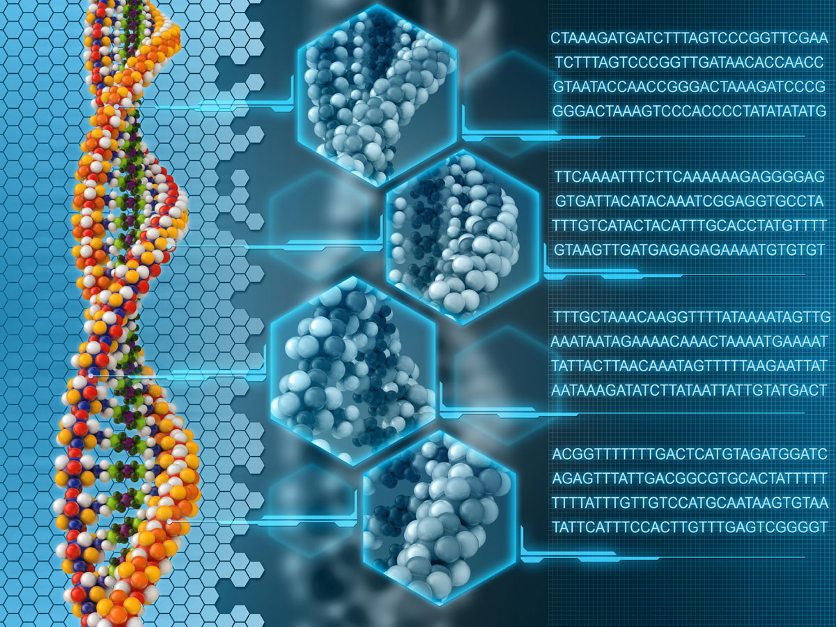 Next-generation Sequencing Services Market: Meticulous Research Reveals Why This Market is growing at a CAGR of 20.4% to Reach $14.1 billion by 2028