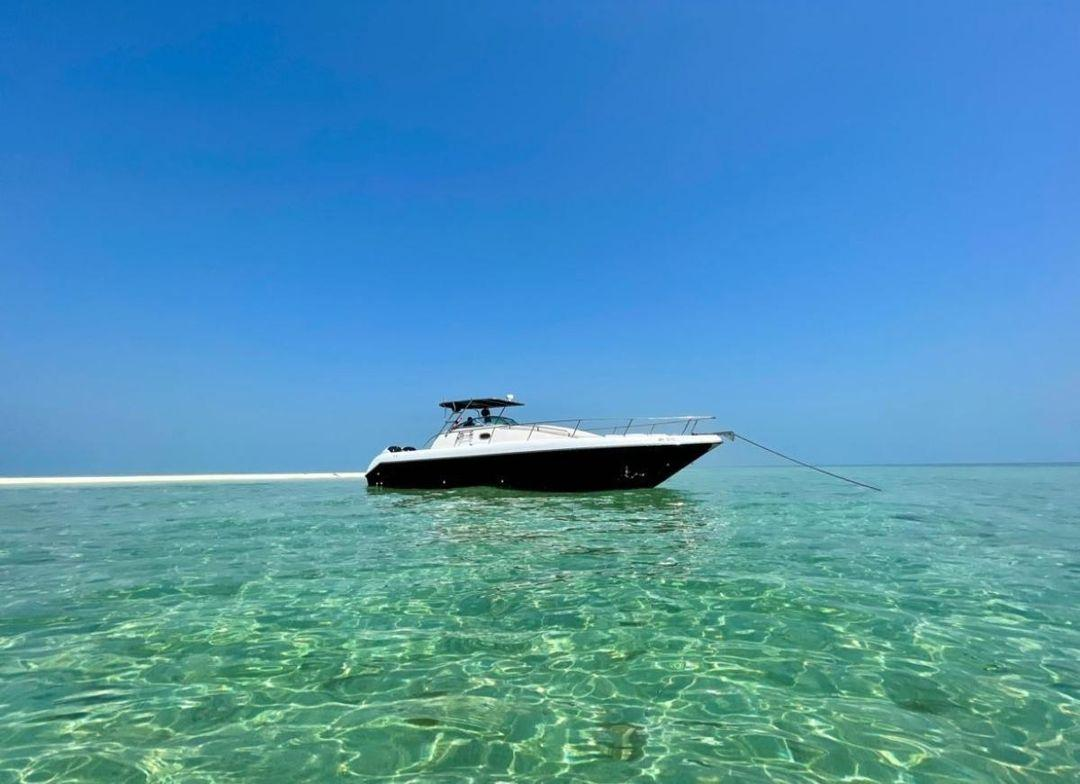 Popular Boat Builders Jas Marine Add To Their Range Of Boats