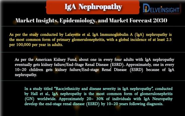 IgA Nephropathy Market