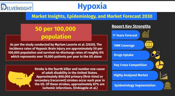 hypoxia-market-size-and-share-analysis