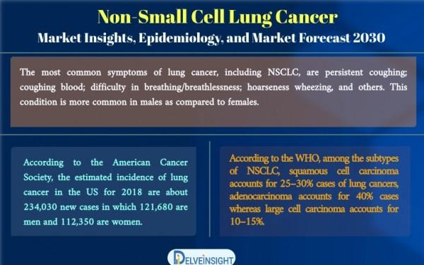 Non-Small Cell Lung Cancer Market